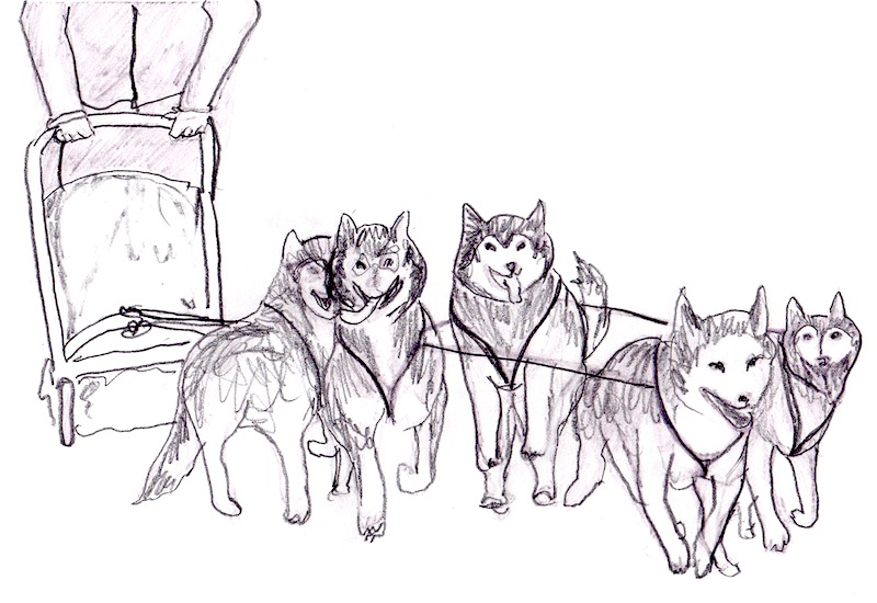 Dog Sled Drawing | www.pixshark.com - Images Galleries ...